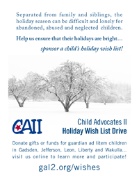 CAII Holiday Wish List Drive Flyer