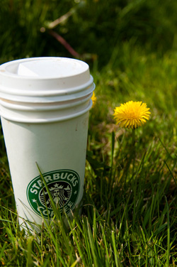 Original Photo Credit: Jorge Ferrer --- Naturally Starbucks!