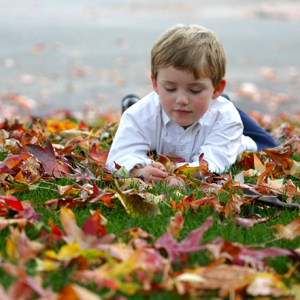 A young boy laying in the grass among fallen autumn leaves