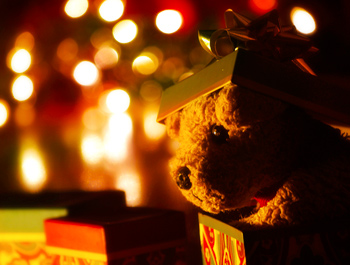 Stuffed animal in a gift box with holiday lights behind