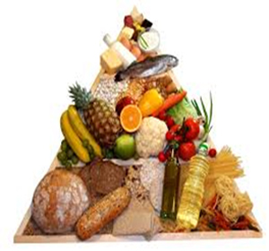 Graphic of Food Pyramid